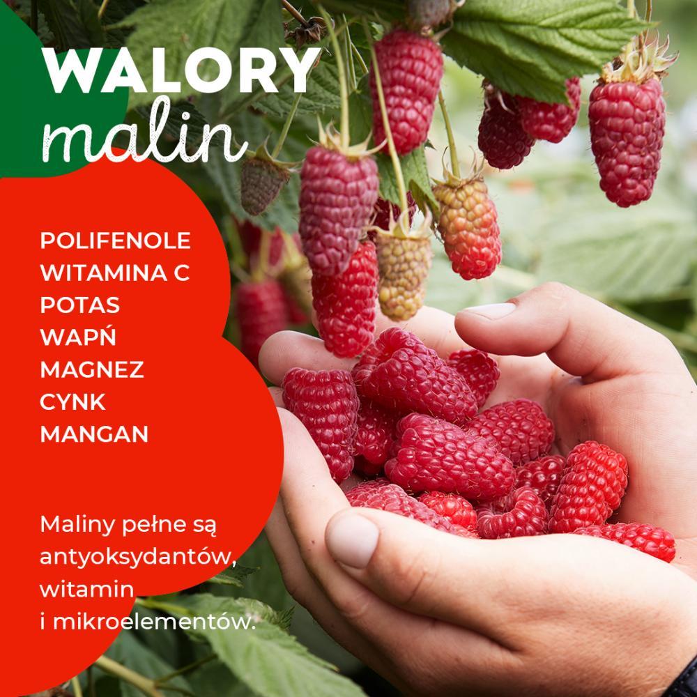 Walory malin - grafika