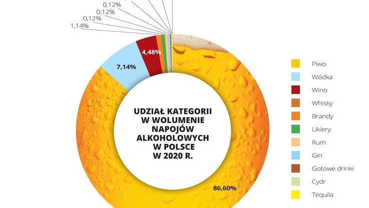 Instytut Jagielloński – infografika (3)